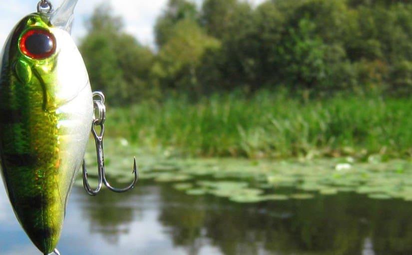 mejores tiendas pesca online
